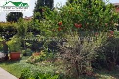 giardino 9
